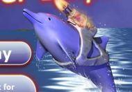 El Delfín laser